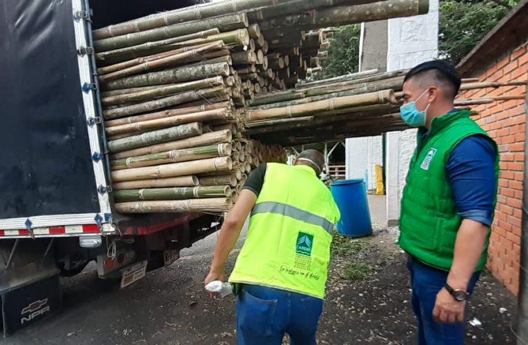 Cárder hace llamado a conductores de camiones para que cumplan con las normas antes de transportar madera
